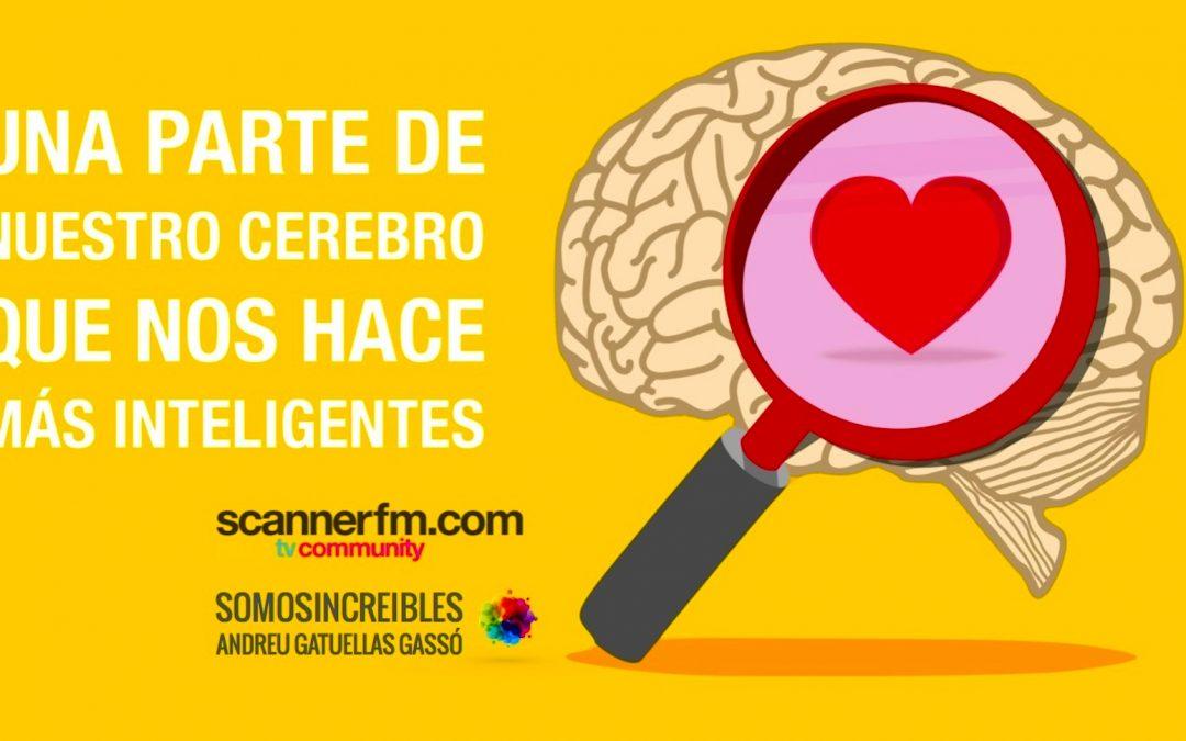 una parte de nuestro cerebro que nos hace más inteligentes